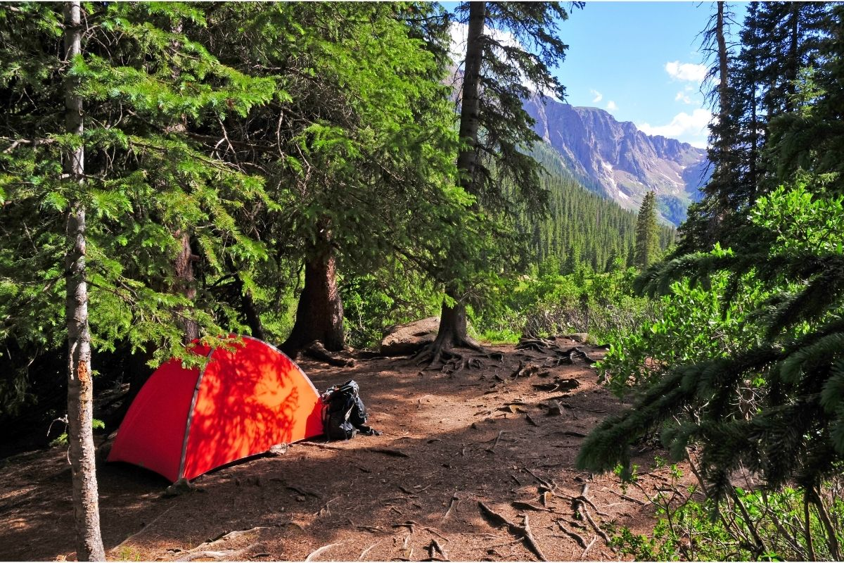 Try Dispersed Camping